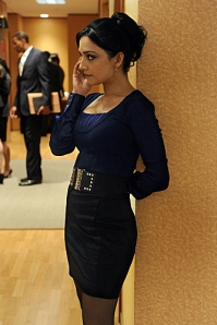 The Good Wife, Kalinda